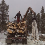 Photo Of Blue River Forestry Tree Care Boulder Co United States