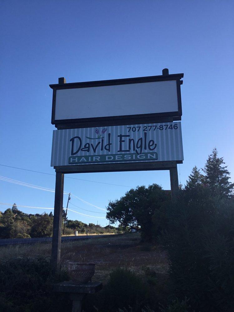 David Engle Hair Design: 9739 Soda Bay Rd, Kelseyville, CA