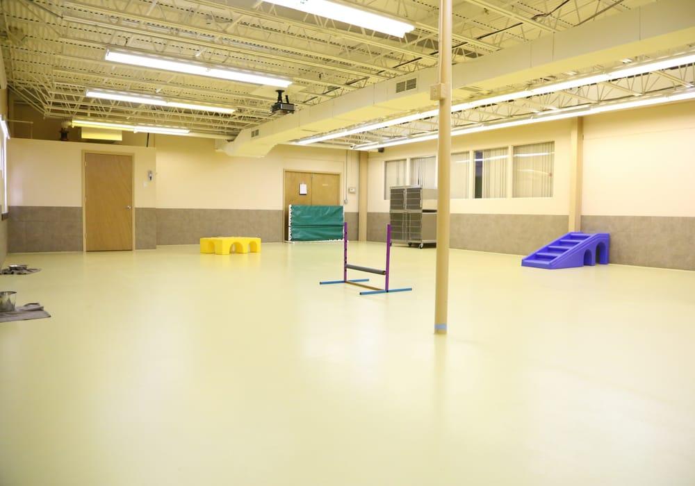 New Beginnings K-9 Training: 1211 Cox Ave, Erlanger, KY
