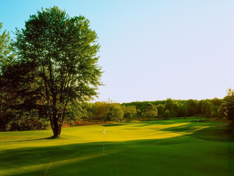 Black Forest & Wilderness Valley Golf Resort: 6500 Nicklaus Dr, Gaylord, MI