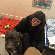Humane Animal Rescue 23 Photos 47 Reviews Animal Shelters
