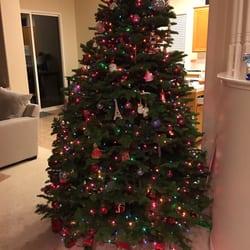 Diego Ca San Christmas North Pole Tree Lot Majesty doggeds