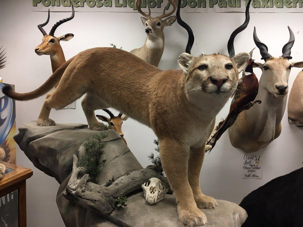 Social Spots from Ponderosa Liquor & Wildlife Gallery
