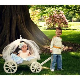 Mini Wedding Wagons - Get Quote - 18 Photos - Party Supplies - 245 ...