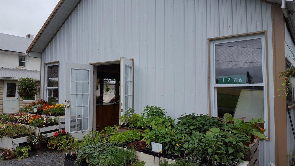 Richmond Produce: 1276 Richmond Rd, Fleetwood, PA