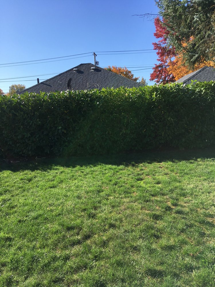 JH Landscaping Maintenace: 541 S 10th St, Independence, OR