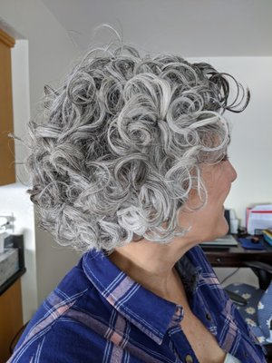 Curl NV