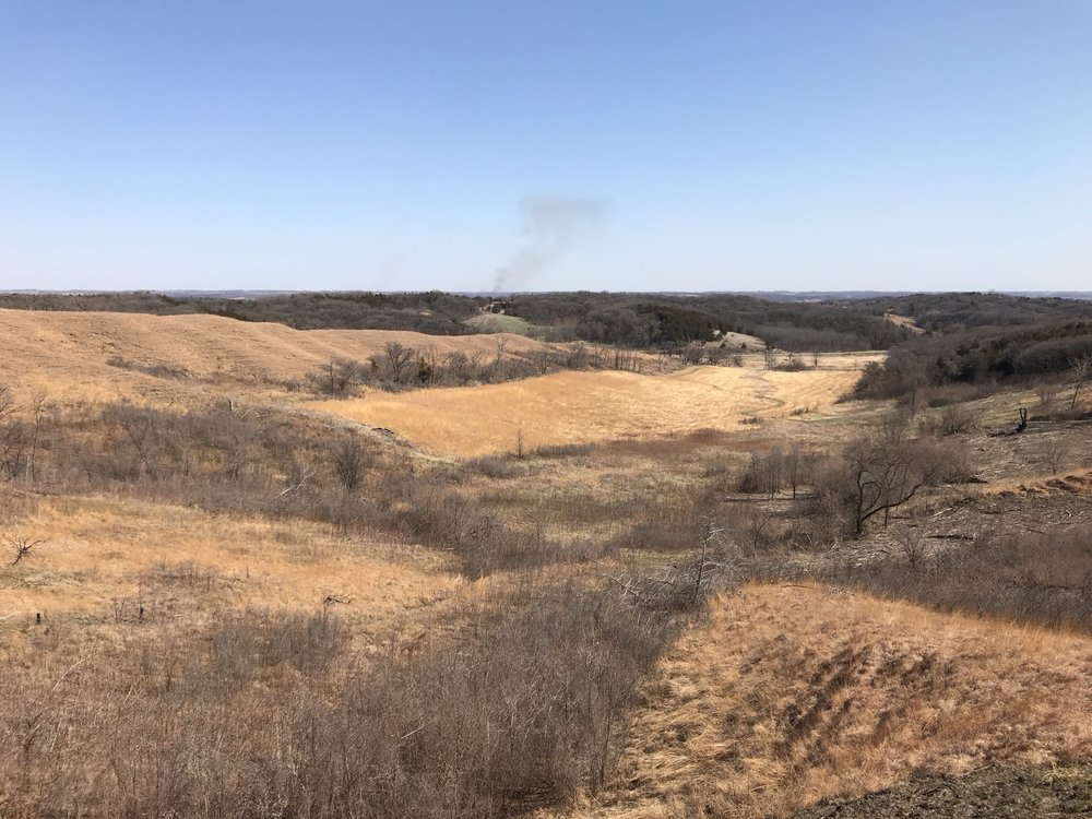 Loess Hills State Forest: 206 Polk St, Pisgah, IA