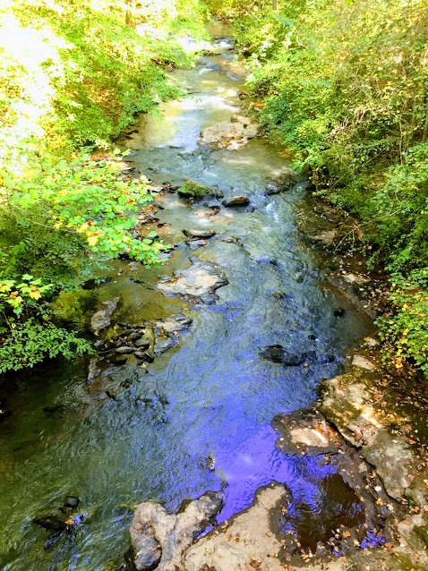 Bear Creek Nature Center: 6300 Cochran Mill Rd, Chattahoochee Hills, GA