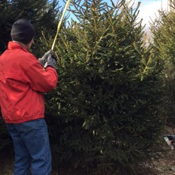Photo Of Corsi Tree Farm   Hamersville, OH, United States. Once Again,
