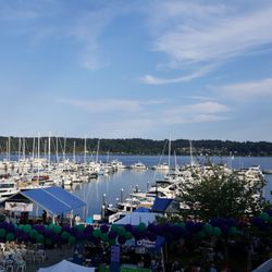 things to do in bremerton wa
