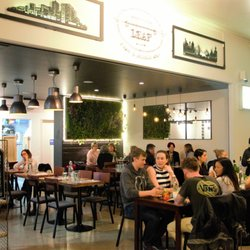 Top 10 Best Dog Friendly Restaurants near Bowral New South Wales
