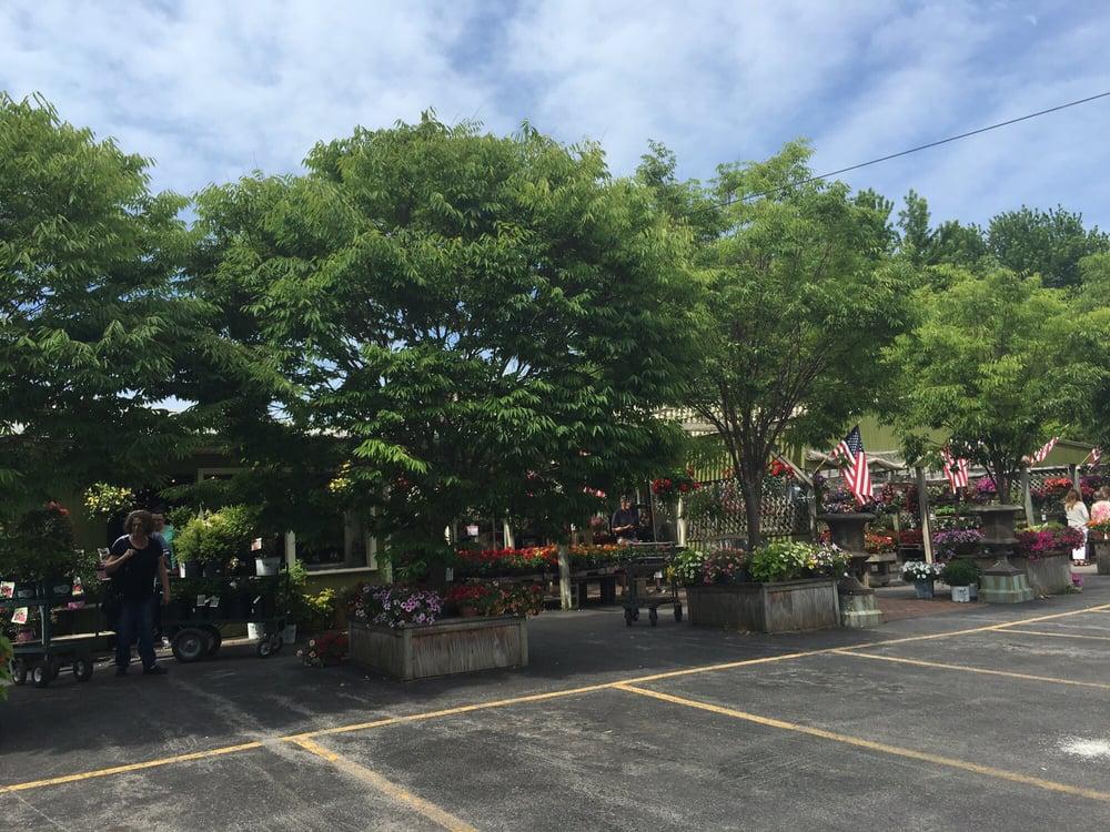sara s garden center nurseries gardening 389 east