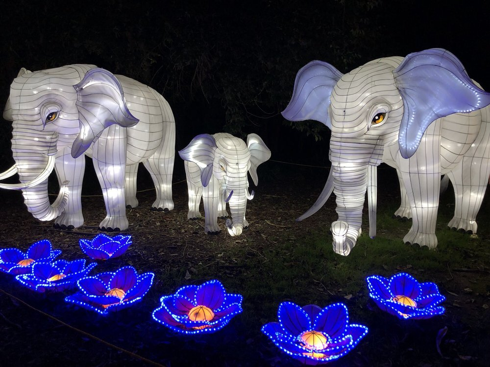 Moonlight Forest - Lantern Art Festival at Los Angeles Arboretum