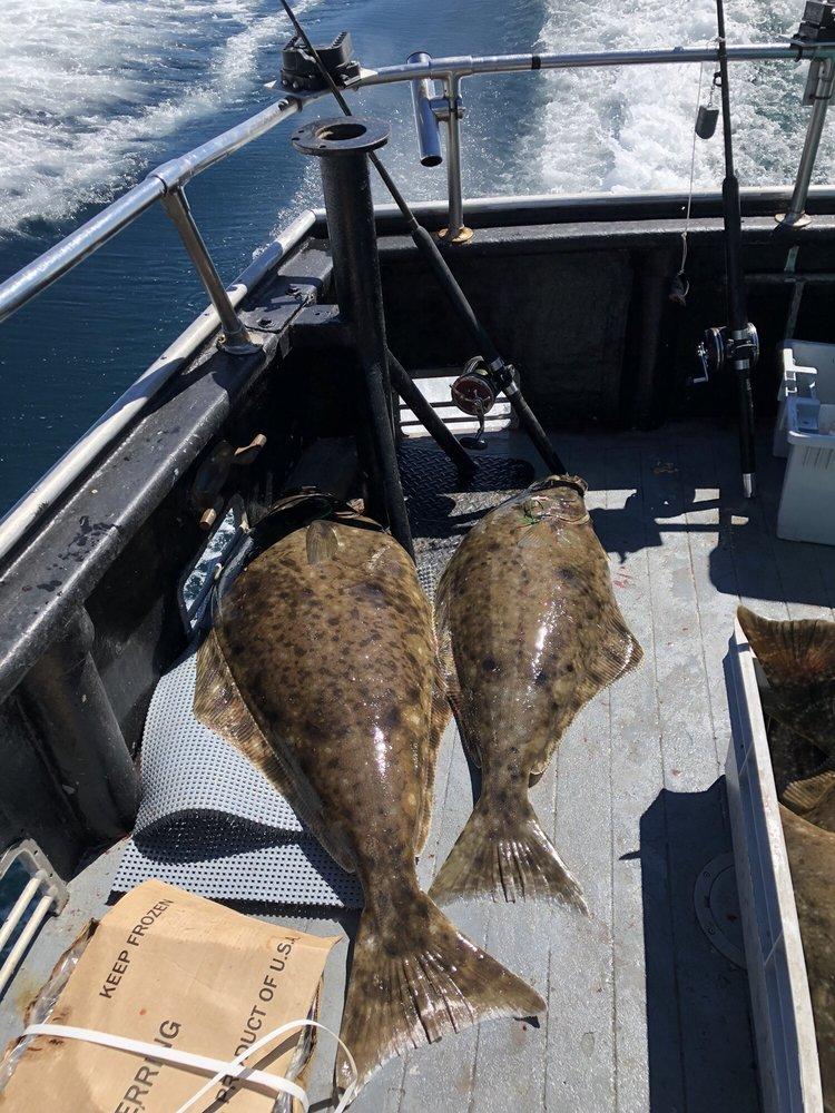Homer Ocean Charters: 4287 Homer Spit Rd, Homer, AK