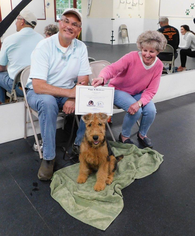 Michelle Payson Dog Training: Douglas, MA
