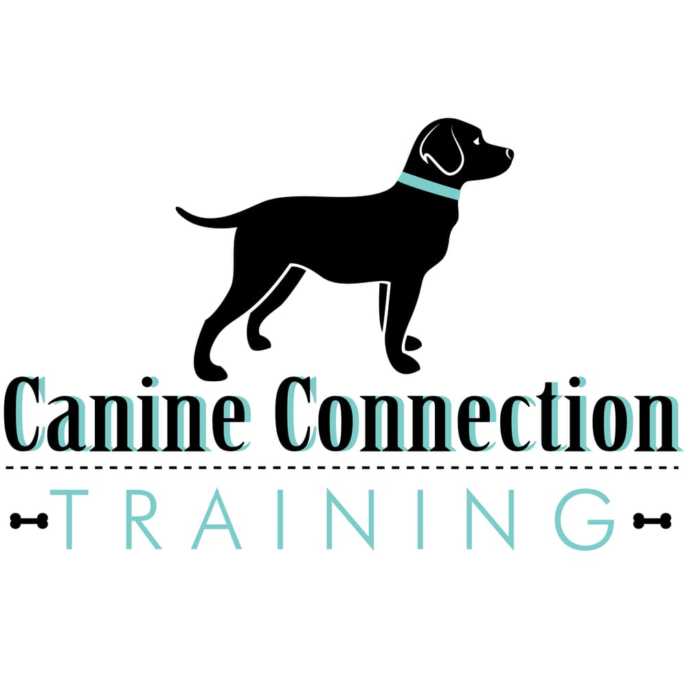 Canine Connection Training: 351 Columbia Memorial Pkwy, League City, TX