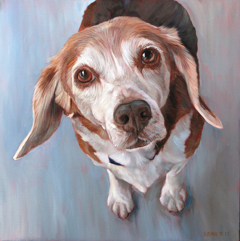 BFF Pet Paintings by David Kennett: 5501 E Gill Pl, Denver, CO