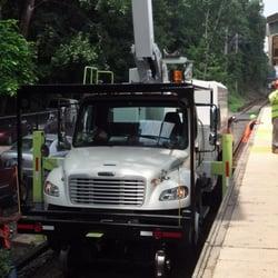 Photo Of Domu0027s Tree Service   Port Washington, NY, United States.