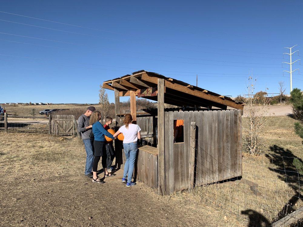 Long Neck Pumpkin Farm: 7595 California Dr, Colorado Springs, CO