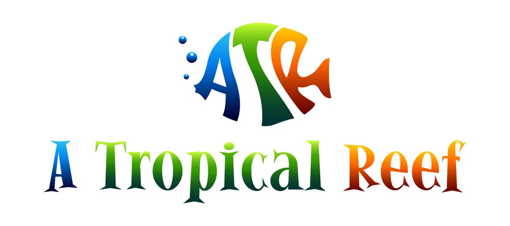 A Tropical Reef: 12061- B 66th St N, Largo, FL