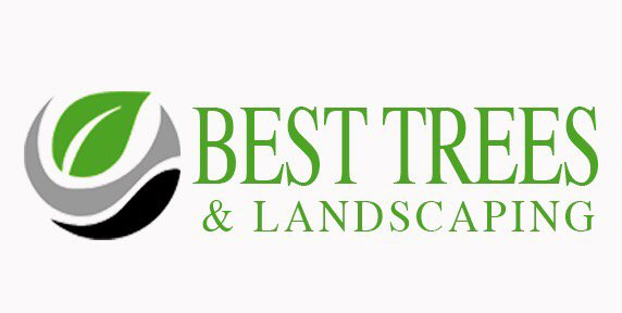 Best Trees & Landscaping: Wimauma, FL