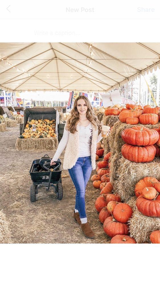 Punky's Pumpkins: 50 Mark W Springs Rd, Santa Rosa, CA