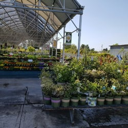 Photo Of Mid City Nursery American Canyon Ca United States Endless Selections