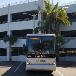 Photo Of Go Buses South Beach Fl United States
