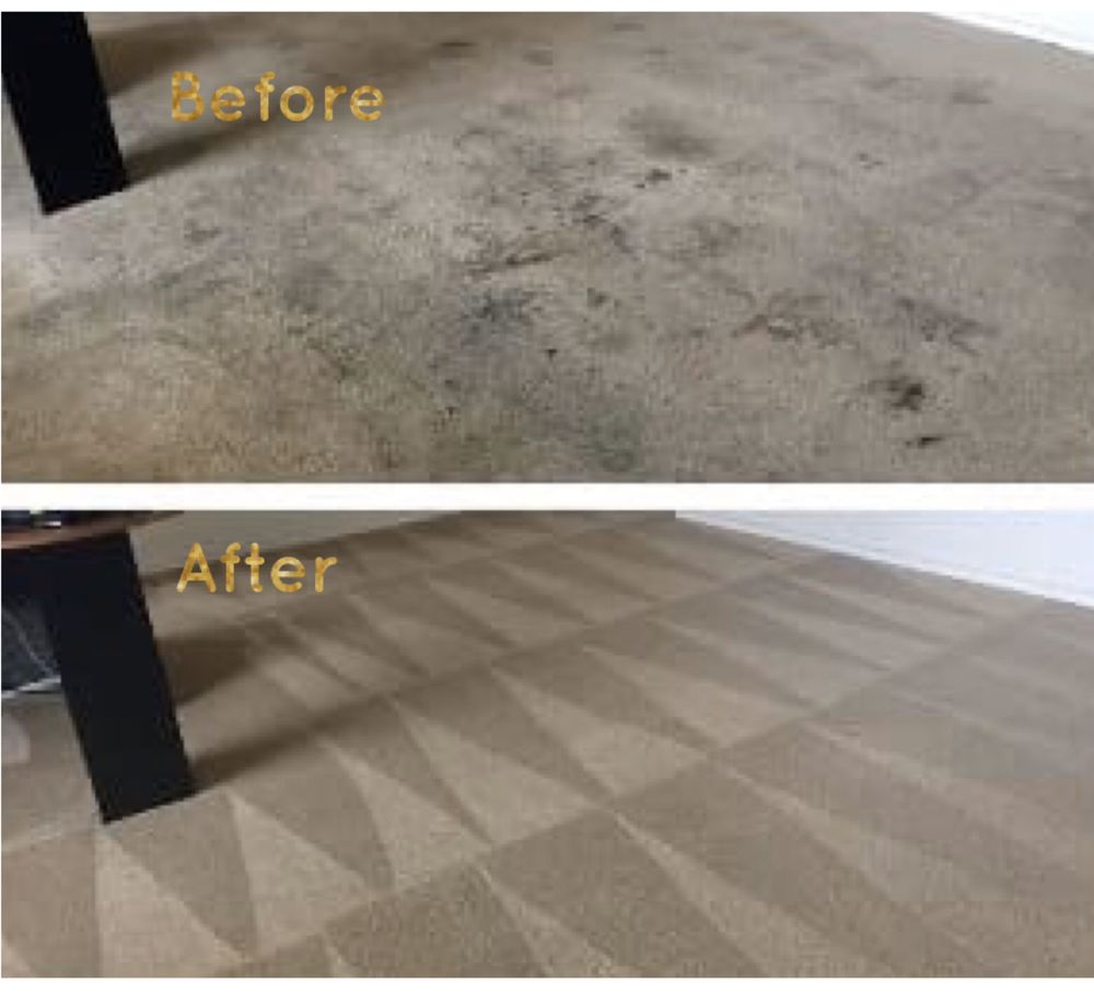 R & R Carpet and Upholstery Cleaning