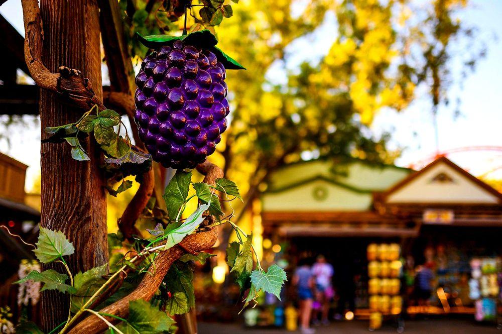 Knott's Berry Farm: 8039 Beach Blvd, Buena Park, CA