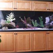 Custom Cabinetry By Photo Of Living Art Aquatics   Cary, IL, United States.  Custom Fish Tank