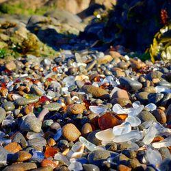 31d61120523e Glass Beach - 1331 Photos & 577 Reviews - Beaches - Fort Bragg, CA - Yelp