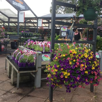 Gardenworld Nursery 2019 All You Need To Know Before