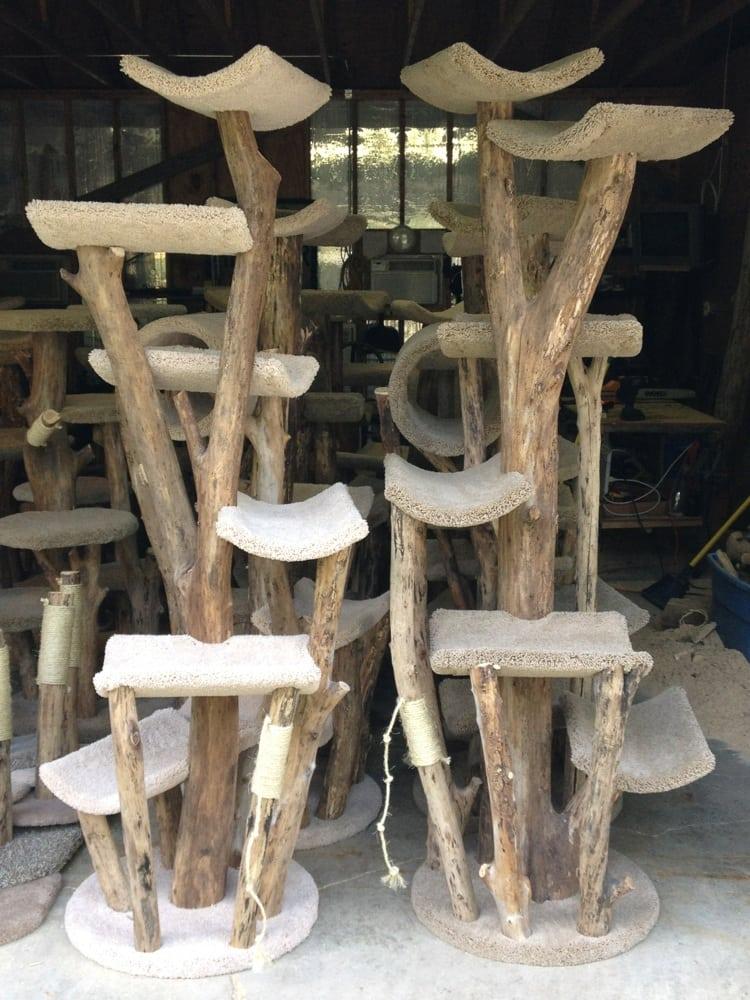 All Natural Wood Artistic Sturdy Cat Furniture Yelp