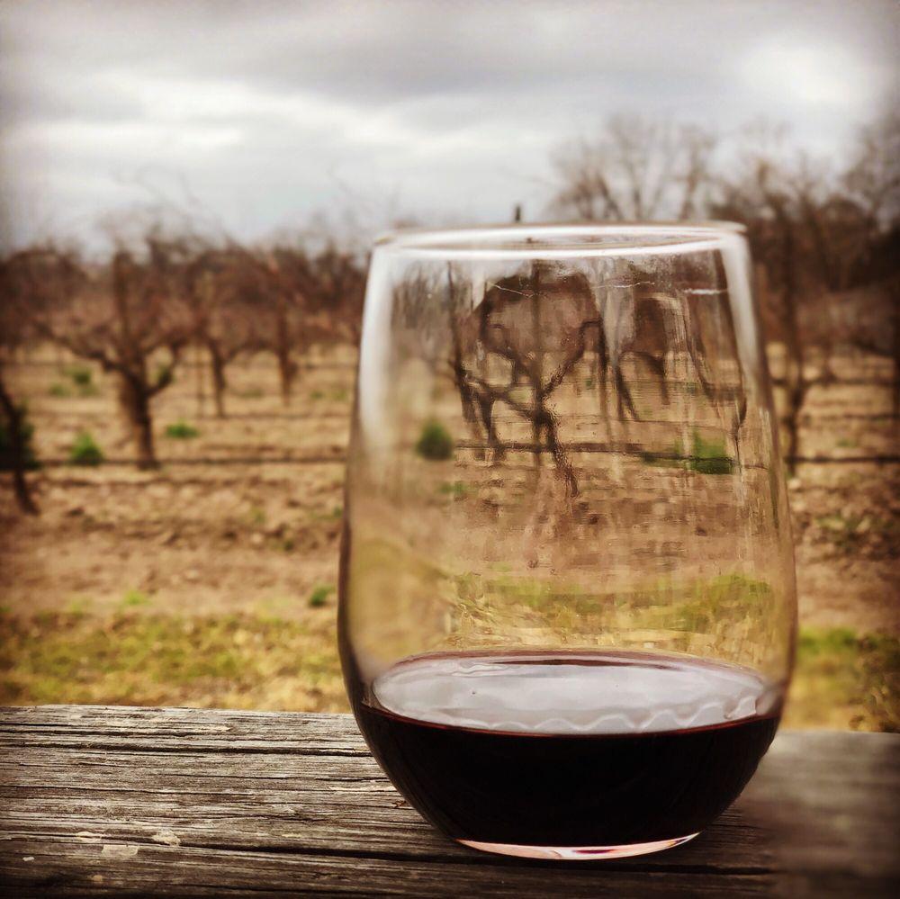 Photo of Val Verde Winery: Del Rio, TX
