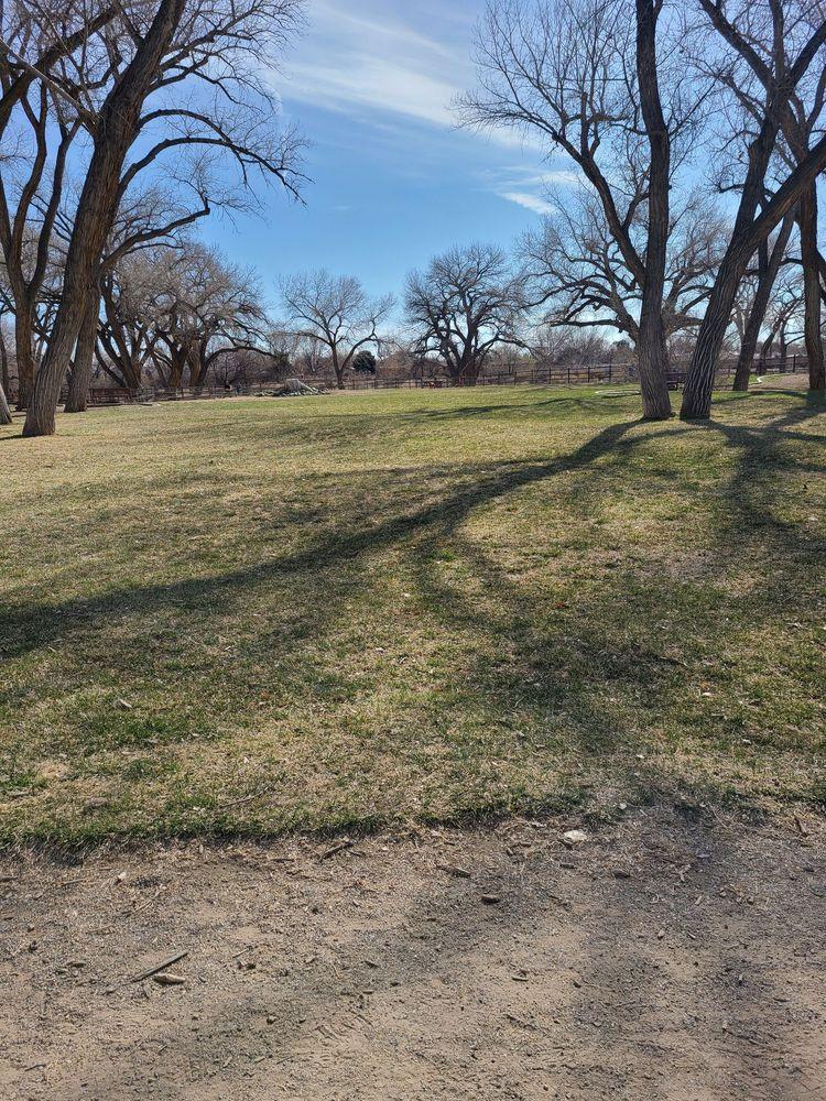 Westland Dog Park: 136 Westland Park Rd, Farmington, NM