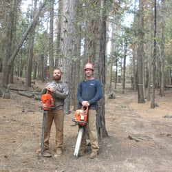 Photo Of Clovis Tree Service Ca United States Owners Brothers
