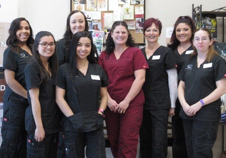 Animal Medical Center of Casa Grande: 3151 N Piper Ave, Casa Grande, AZ