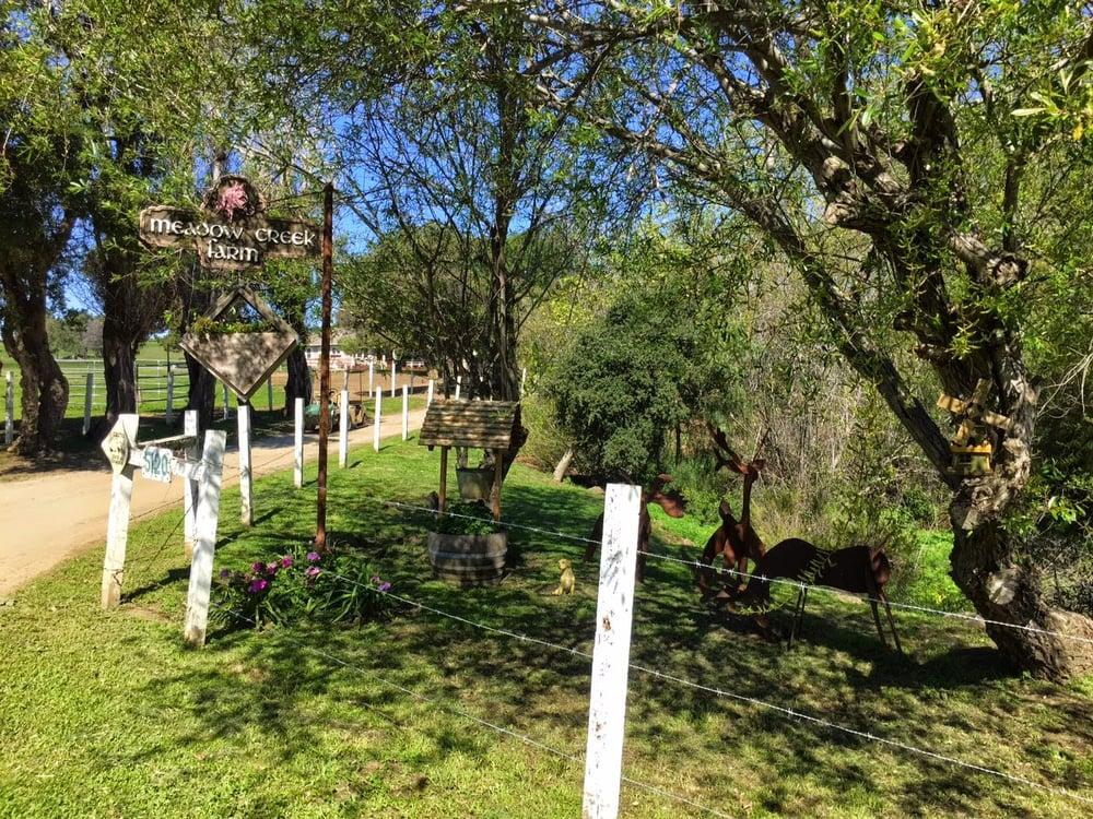 Meadow Creek Farm Hestepension 5120 Bridge Creek Rd
