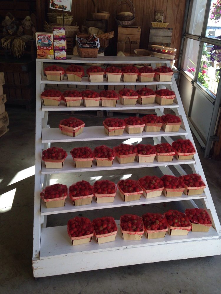 Krieg's Strawberry Farm and Market: 3175 North Ridge Rd, Vermilion, OH