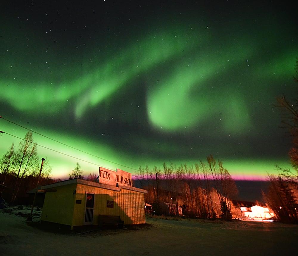 Fox Gardens & Gift Shop: 2207 Old Elliott Hwy, Fairbanks, AK