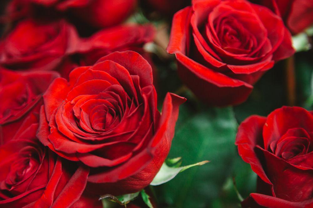 The Garden Gate Florist: 1692 Carolina Ave, Orangeburg, SC