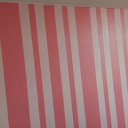Bay Areas Paint And Special Coatings
