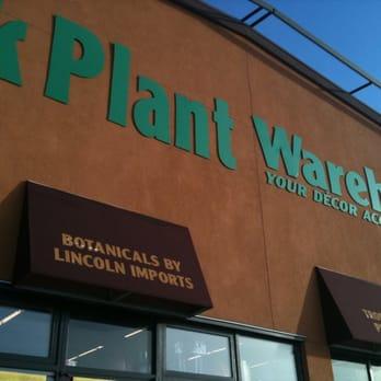 Silk plant warehouse 28 photos home decor 6108 centre st se photo of silk plant warehouse calgary ab canada mightylinksfo