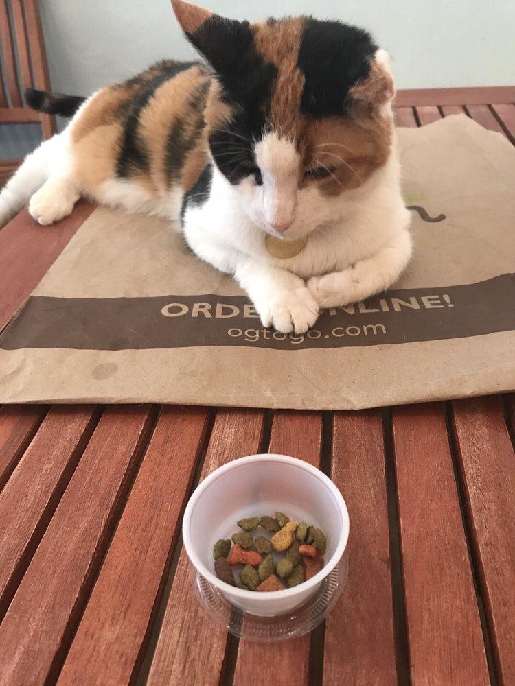Eat, Purr, Love Cat Café