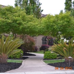 Photo Of Sanders Lawn Care Sacramento Ca United States Another Mulch Job