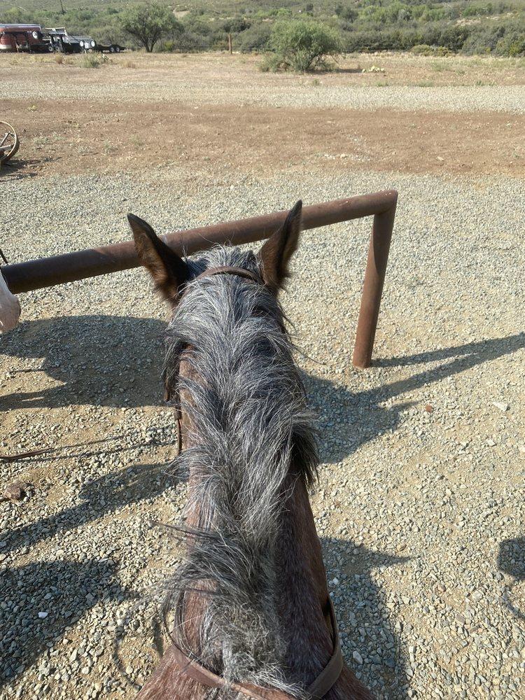 Foothills Ranch: 7250 State Rte 69, Mayer, AZ