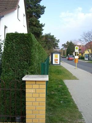 gartengestaltung und pflege pirl - home help - eichhornstr. 5, Garten ideen