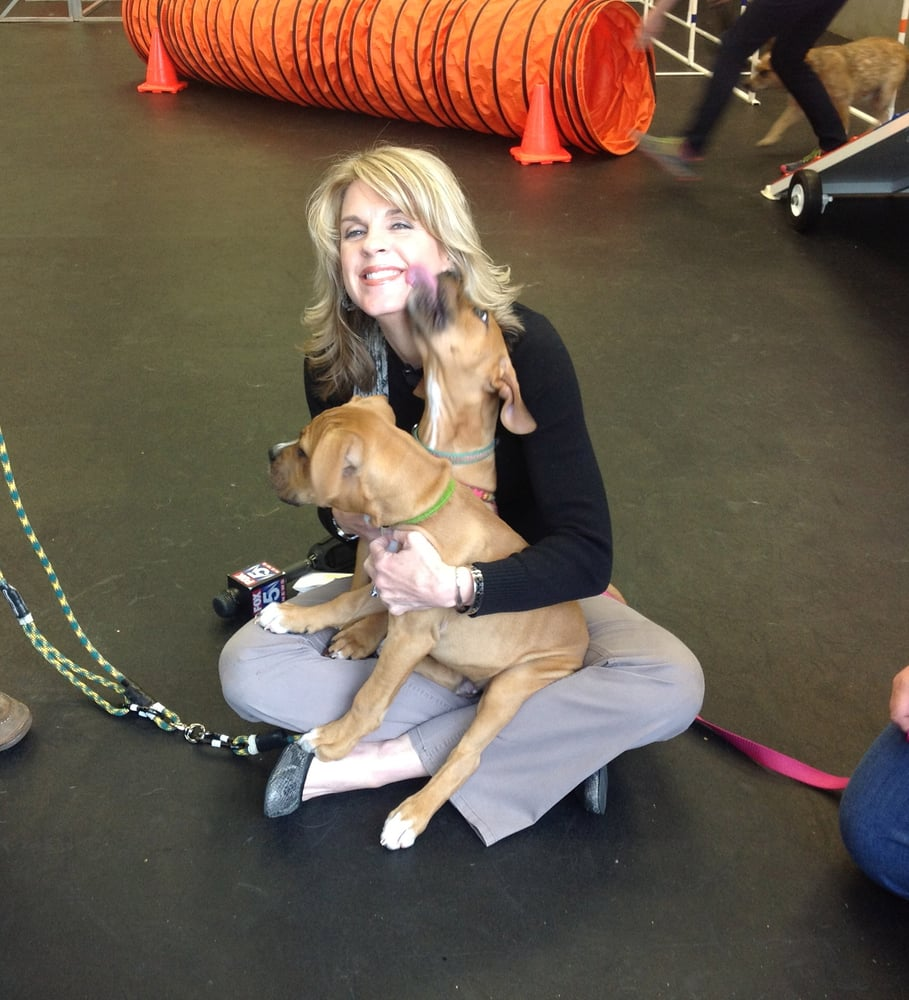 Holly Morris Of Fox 5 With Snufie And Bailey Yelp